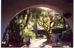 Il Giardino, the garden of the delightful villa above Antignano where Smollett spent the  last year of his life.   Photo- Louis Stott